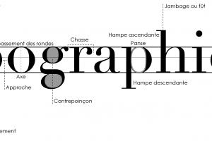 La typographie : l'élément clef pour une mise en page réussie !