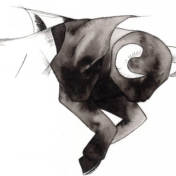 illustration taureau